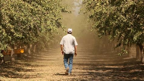 California's Central Valley: 'More Than Just Farmers on